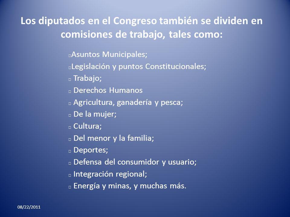 Los diputados en el Congreso también se dividen en comisiones de trabajo, tales como: