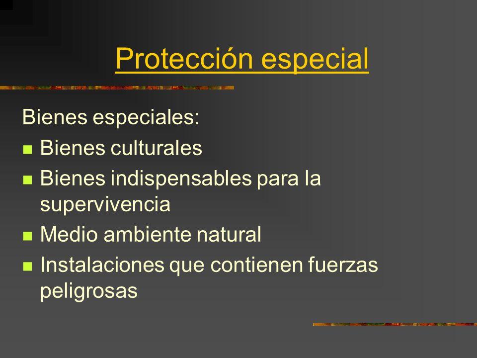 Protección especial Bienes especiales: Bienes culturales