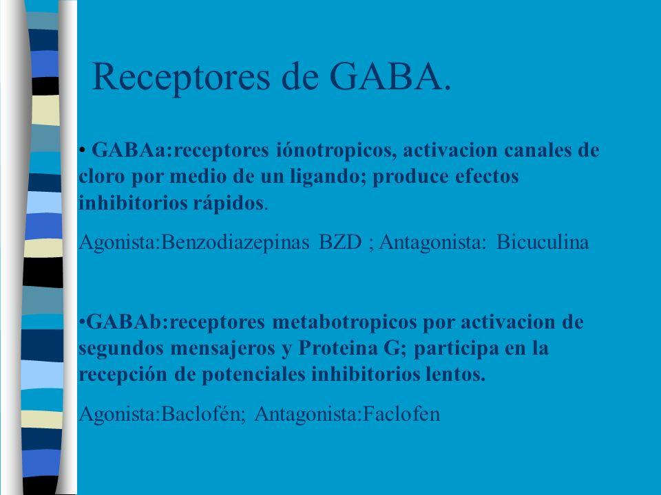 Receptores de GABA. GABAa:receptores iónotropicos, activacion canales de cloro por medio de un ligando; produce efectos inhibitorios rápidos.