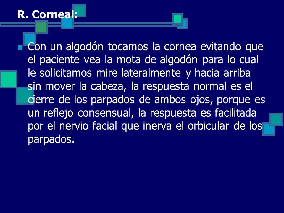 R. Corneal: