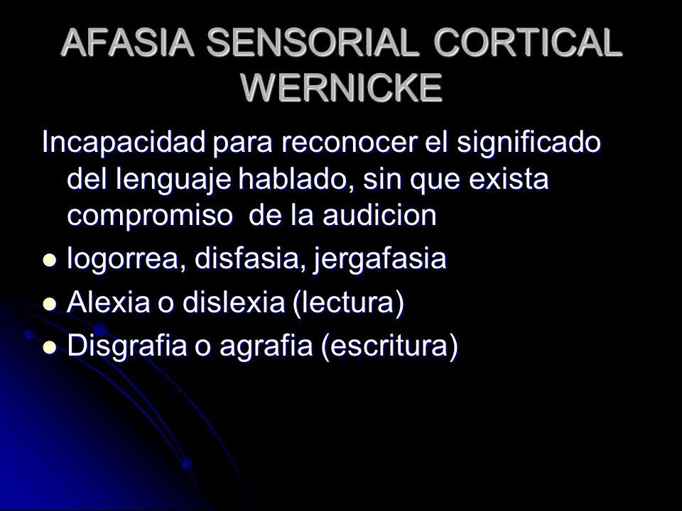AFASIA SENSORIAL CORTICAL WERNICKE