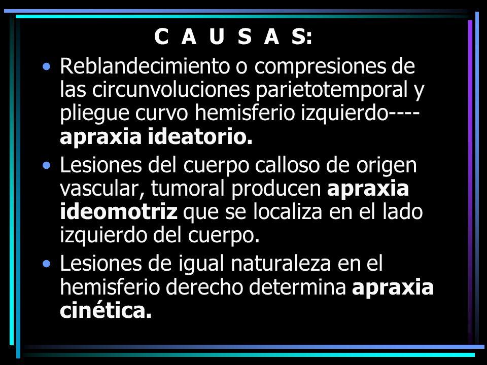 C A U S A S: Reblandecimiento o compresiones de las circunvoluciones parietotemporal y pliegue curvo hemisferio izquierdo----apraxia ideatorio.