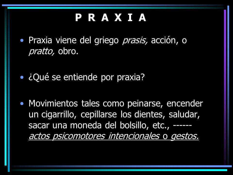 P R A X I A Praxia viene del griego prasis, acción, o pratto, obro.