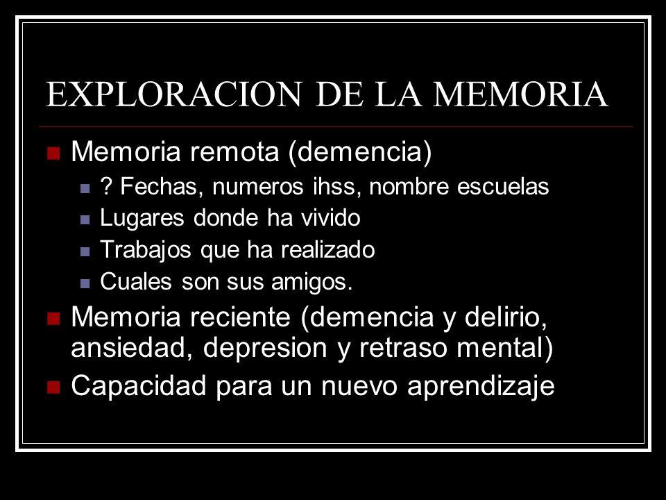 EXPLORACION DE LA MEMORIA