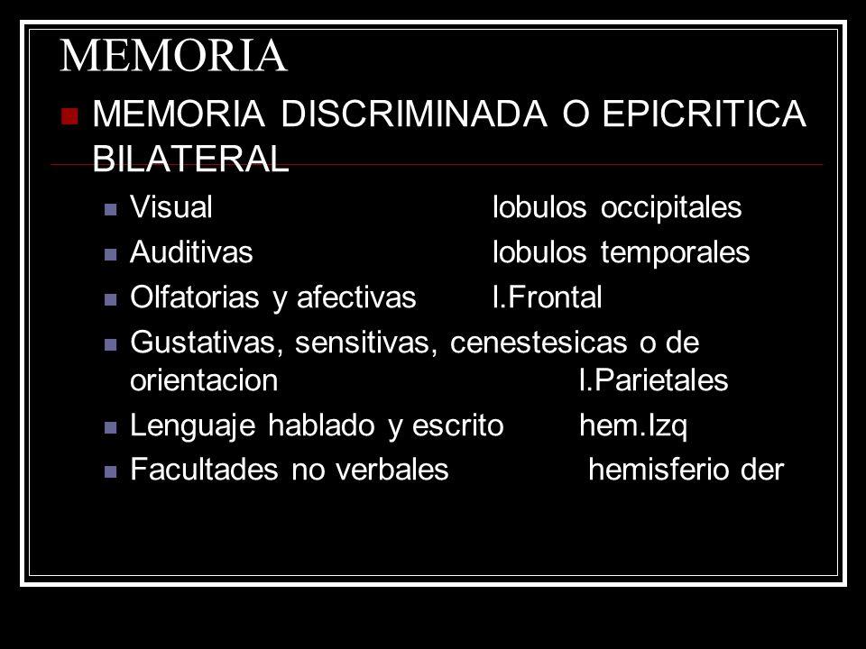 MEMORIA MEMORIA DISCRIMINADA O EPICRITICA BILATERAL