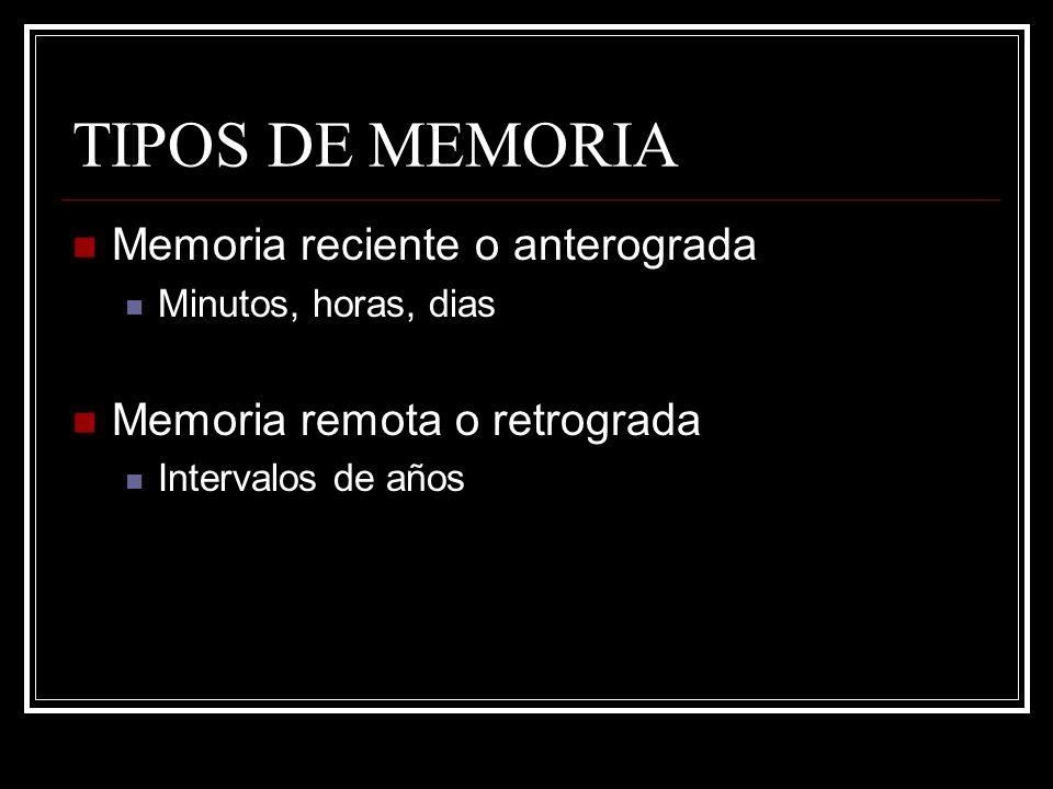 TIPOS DE MEMORIA Memoria reciente o anterograda