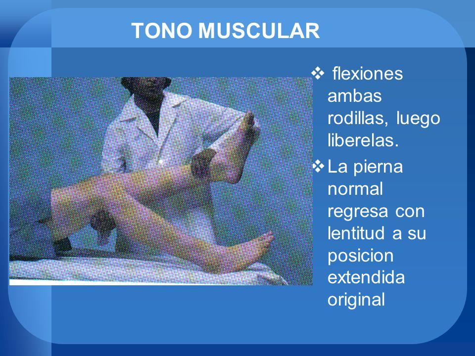 TONO MUSCULAR flexiones ambas rodillas, luego liberelas.