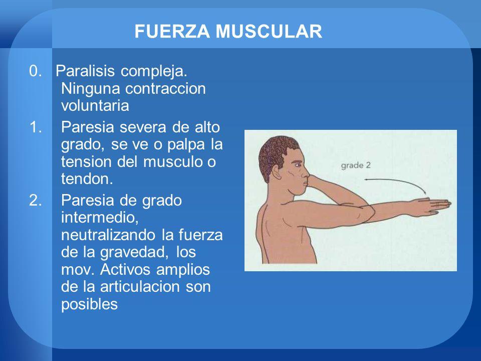 FUERZA MUSCULAR 0. Paralisis compleja. Ninguna contraccion voluntaria