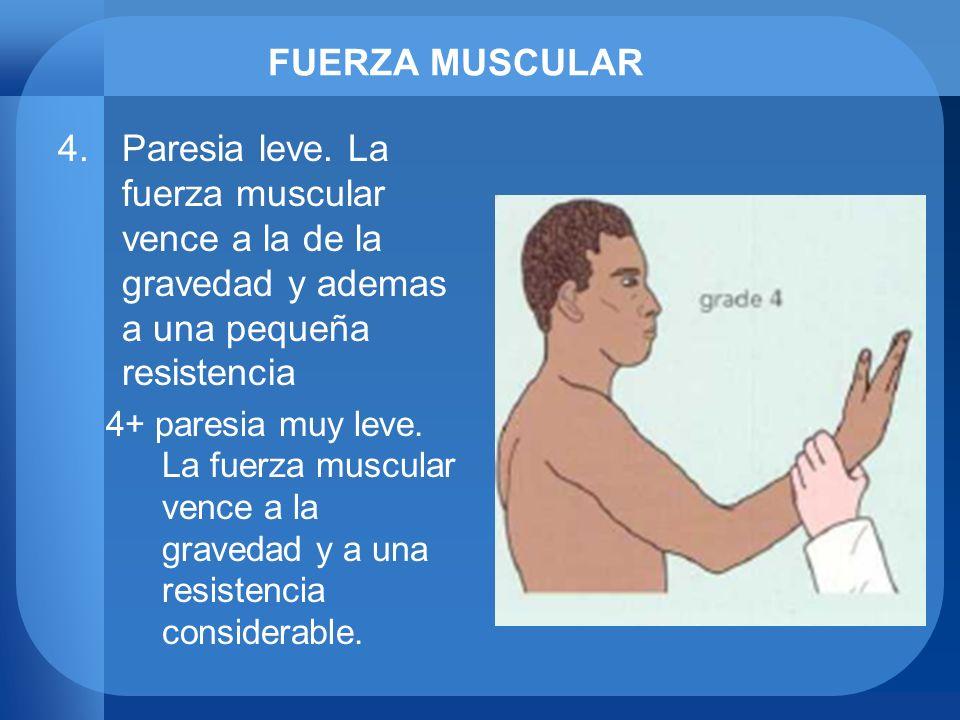 FUERZA MUSCULARParesia leve. La fuerza muscular vence a la de la gravedad y ademas a una pequeña resistencia.