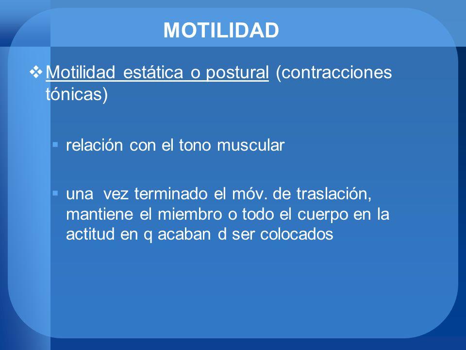 MOTILIDAD Motilidad estática o postural (contracciones tónicas)