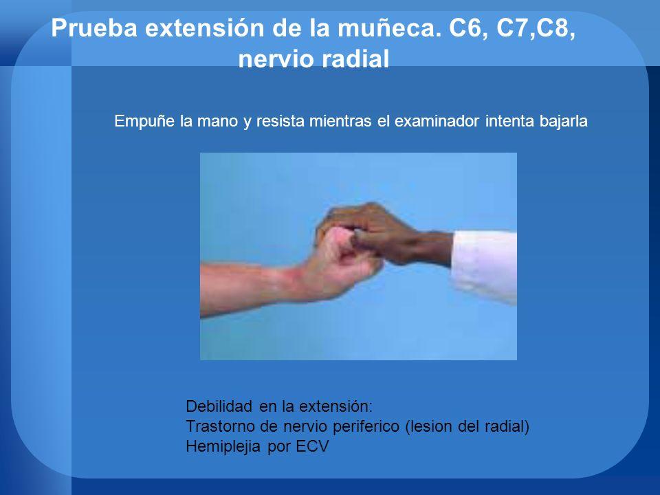 Prueba extensión de la muñeca. C6, C7,C8, nervio radial