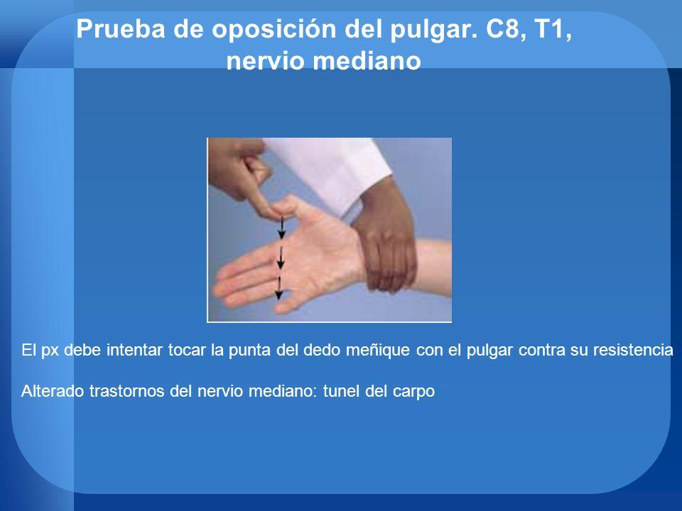 Prueba de oposición del pulgar. C8, T1, nervio mediano