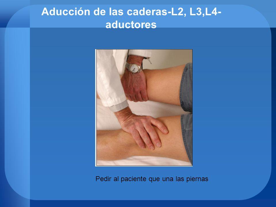 Aducción de las caderas-L2, L3,L4- aductores