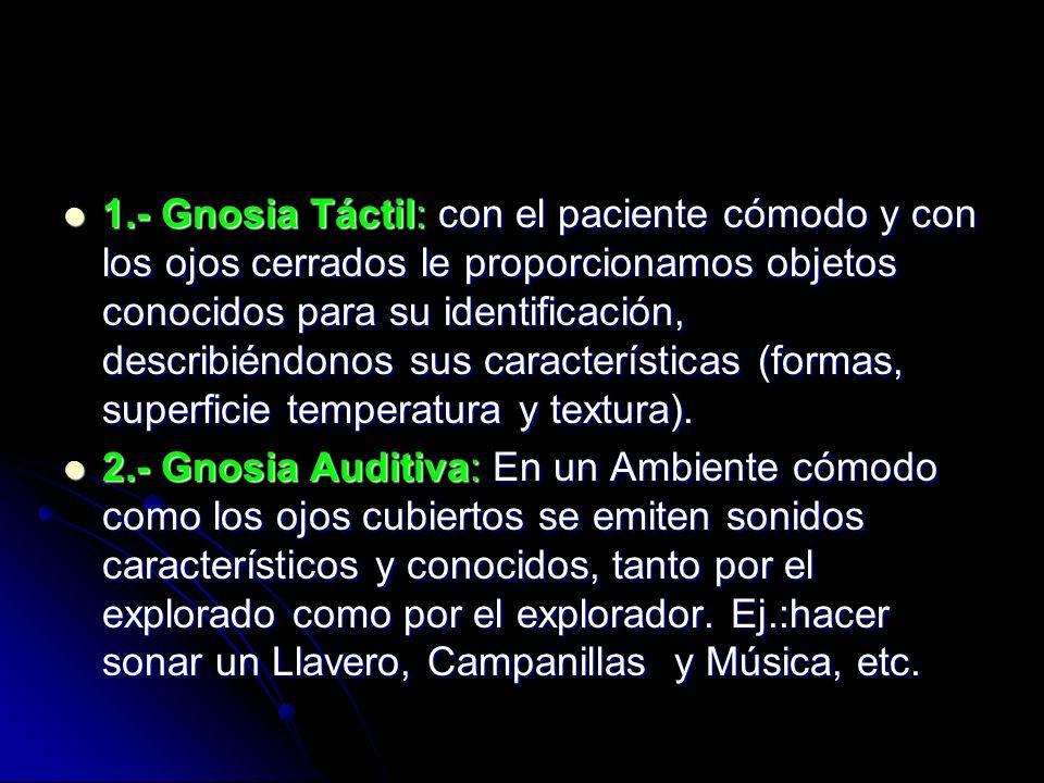 1.- Gnosia Táctil: con el paciente cómodo y con los ojos cerrados le proporcionamos objetos conocidos para su identificación, describiéndonos sus características (formas, superficie temperatura y textura).