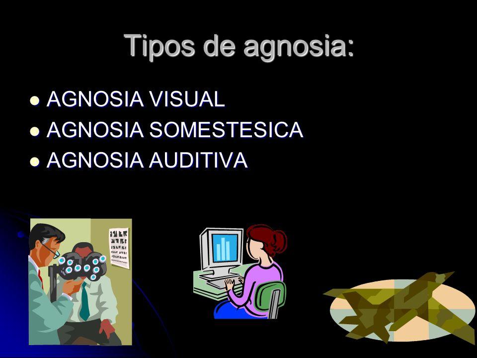 Tipos de agnosia: AGNOSIA VISUAL AGNOSIA SOMESTESICA AGNOSIA AUDITIVA