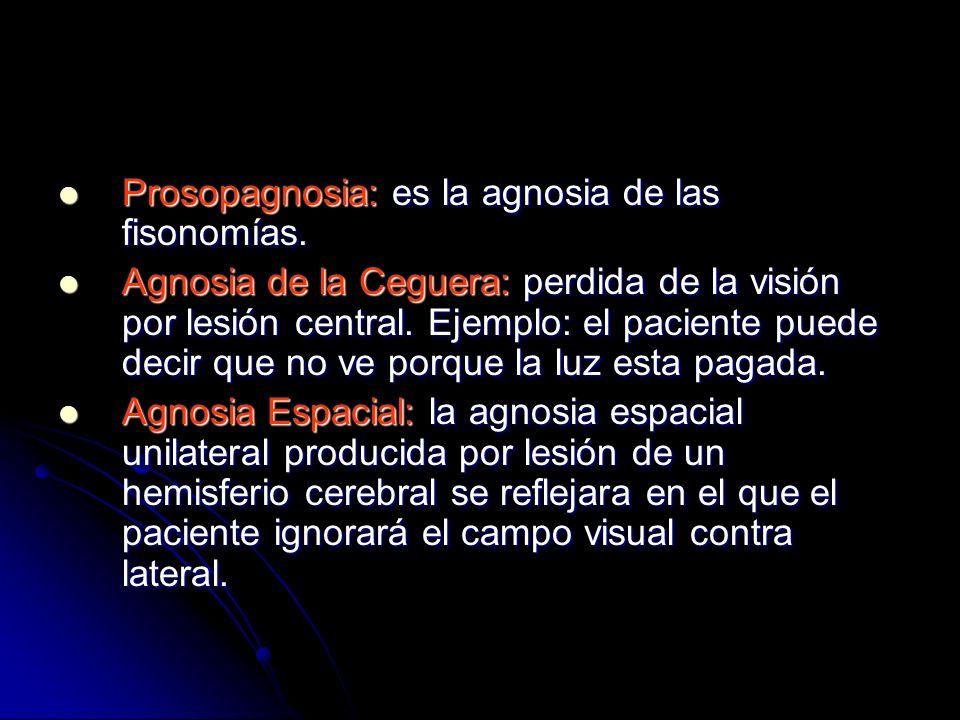 Prosopagnosia: es la agnosia de las fisonomías.