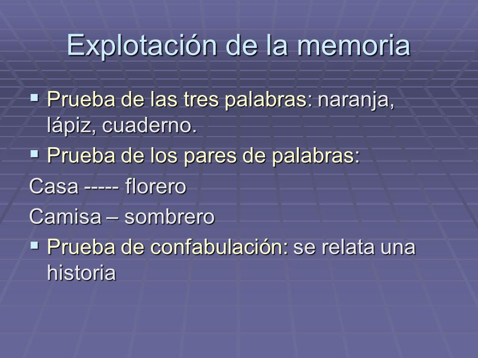 Explotación de la memoria