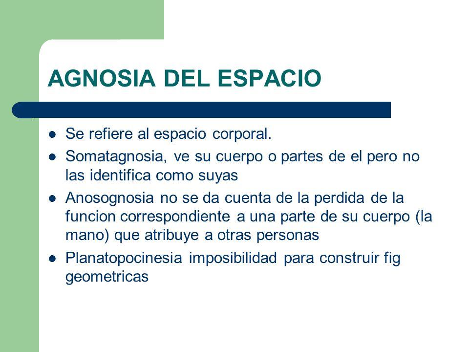 AGNOSIA DEL ESPACIO Se refiere al espacio corporal.