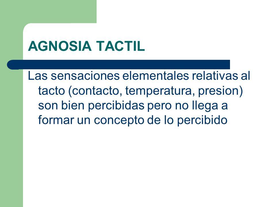 AGNOSIA TACTIL