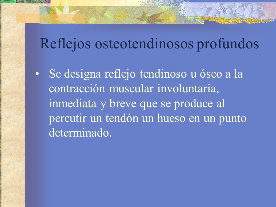 Reflejos osteotendinosos profundos