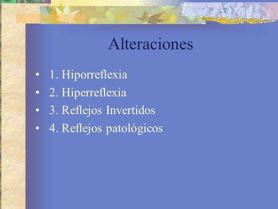 Alteraciones 1. Hiporreflexia 2. Hiperreflexia 3. Reflejos Invertidos