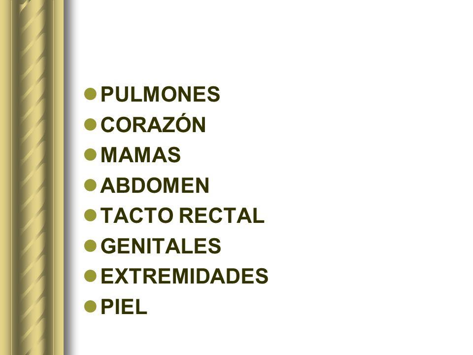 PULMONES CORAZÓN MAMAS ABDOMEN TACTO RECTAL GENITALES EXTREMIDADES PIEL