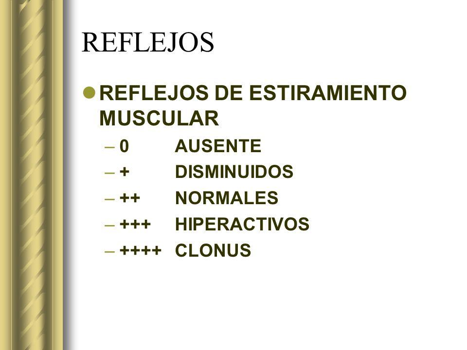 REFLEJOS REFLEJOS DE ESTIRAMIENTO MUSCULAR 0 AUSENTE + DISMINUIDOS