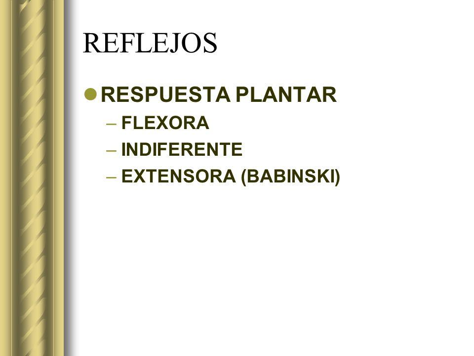 REFLEJOS RESPUESTA PLANTAR FLEXORA INDIFERENTE EXTENSORA (BABINSKI)
