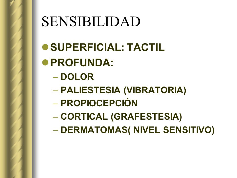 SENSIBILIDAD SUPERFICIAL: TACTIL PROFUNDA: DOLOR