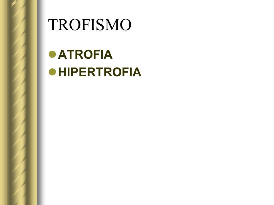 TROFISMO ATROFIA HIPERTROFIA