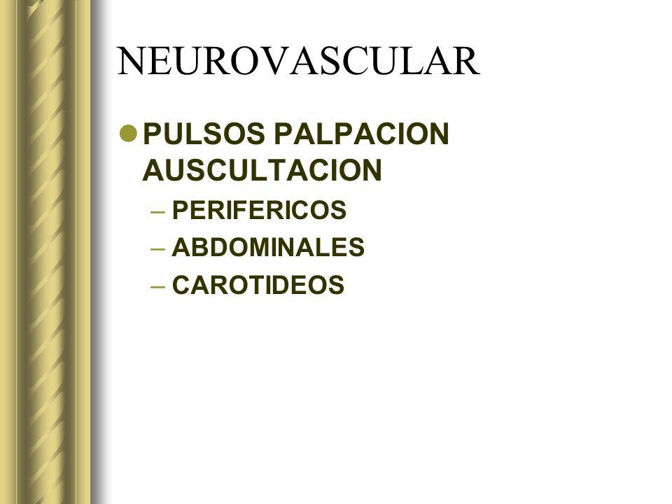 NEUROVASCULAR PULSOS PALPACION AUSCULTACION PERIFERICOS ABDOMINALES