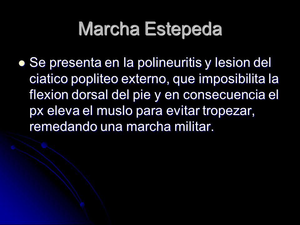 Marcha Estepeda