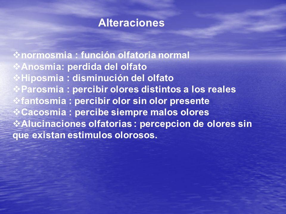 Alteraciones normosmia : función olfatoria normal