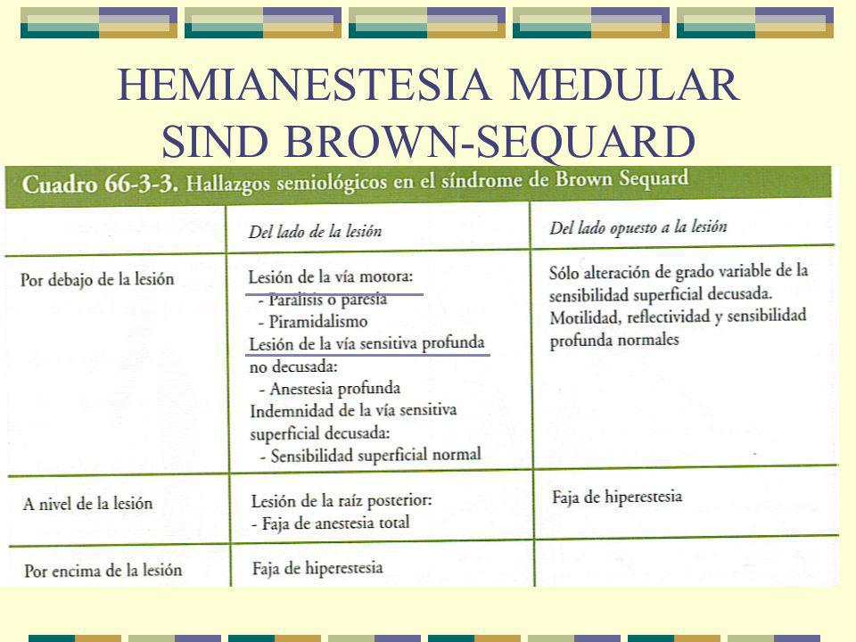 HEMIANESTESIA MEDULAR SIND BROWN-SEQUARD