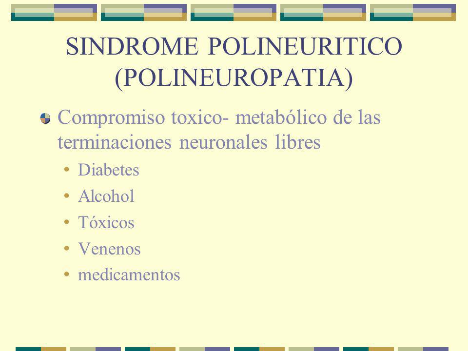 SINDROME POLINEURITICO (POLINEUROPATIA)