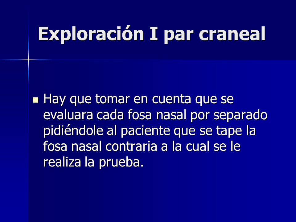 Exploración I par craneal