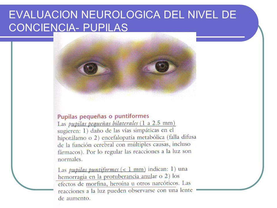 EVALUACION NEUROLOGICA DEL NIVEL DE CONCIENCIA- PUPILAS