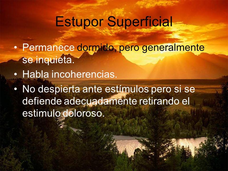 Estupor Superficial Permanece dormido, pero generalmente se inquieta.