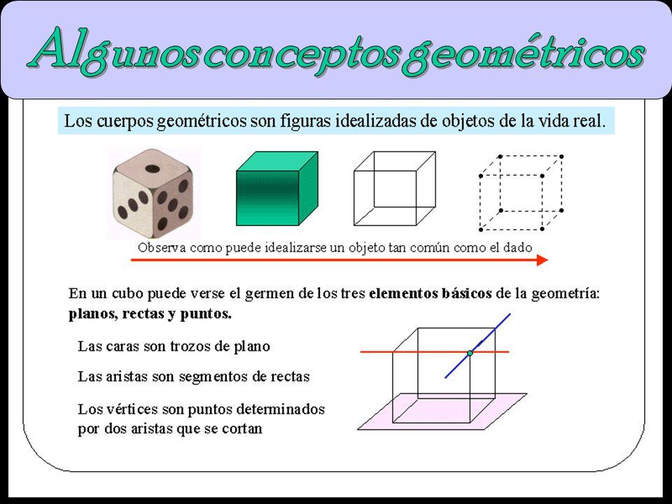 Algunos conceptos geométricos
