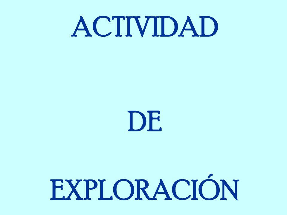 ACTIVIDAD DE EXPLORACIÓN