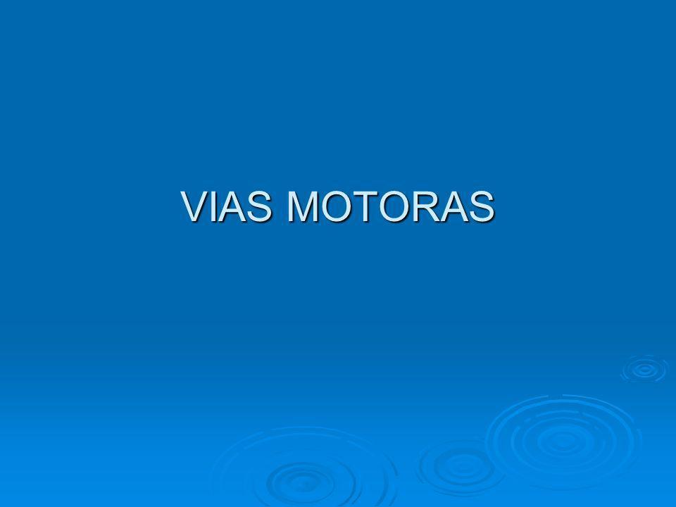 VIAS MOTORAS