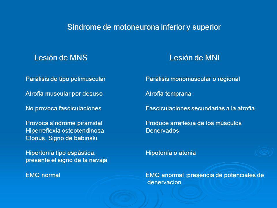 Síndrome de motoneurona inferior y superior