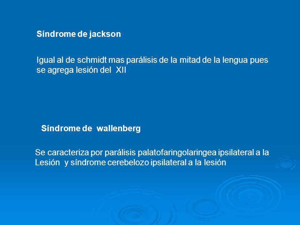 Síndrome de jacksonIgual al de schmidt mas parálisis de la mitad de la lengua pues. se agrega lesión del XII.