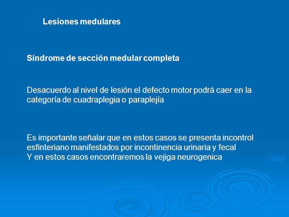 Lesiones medularesSíndrome de sección medular completa. Desacuerdo al nivel de lesión el defecto motor podrá caer en la.