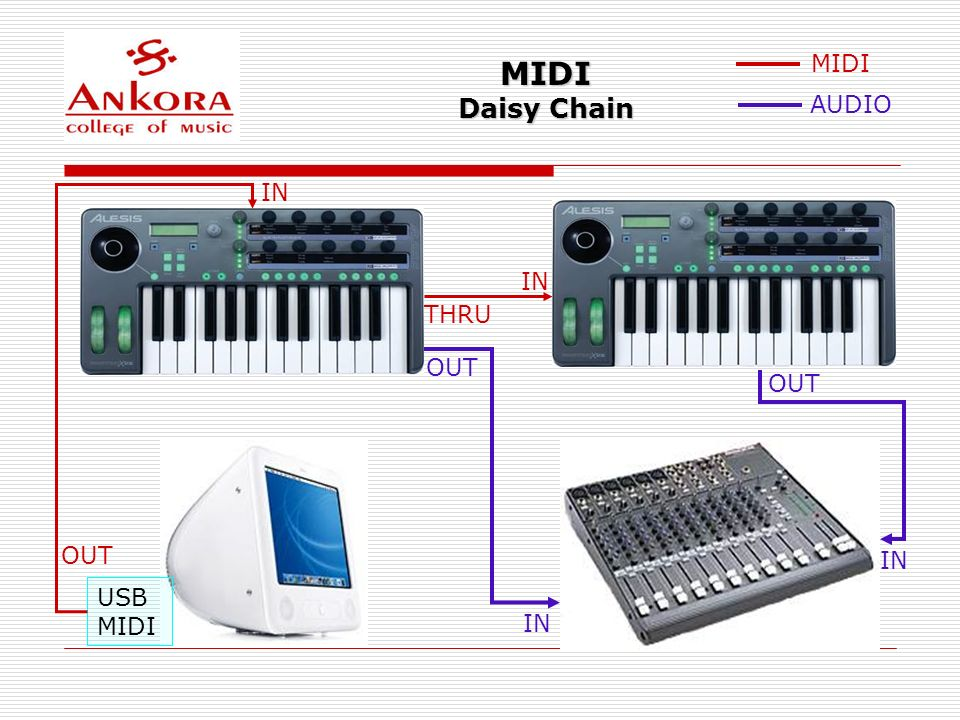 MIDI Daisy Chain MIDI AUDIO IN IN THRU OUT OUT OUT IN USB MIDI IN