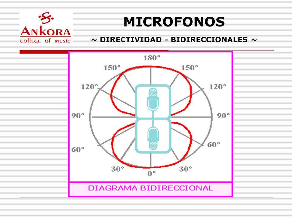 ~ DIRECTIVIDAD - BIDIRECCIONALES ~