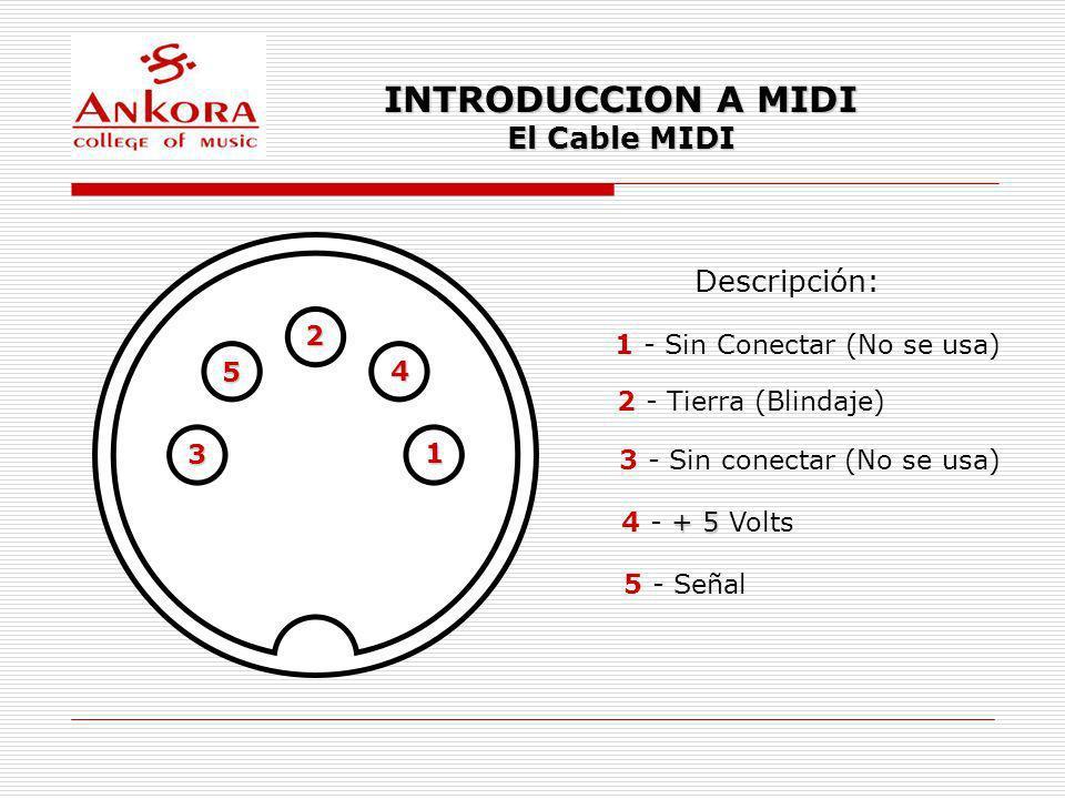 INTRODUCCION A MIDI El Cable MIDI Descripción: 2