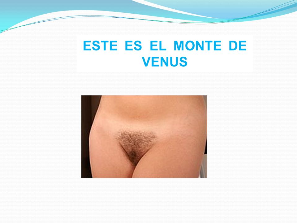 ESTE ES EL MONTE DE VENUS
