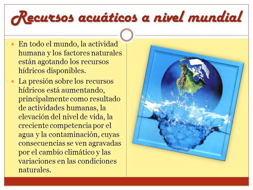 Recursos acuáticos a nivel mundial