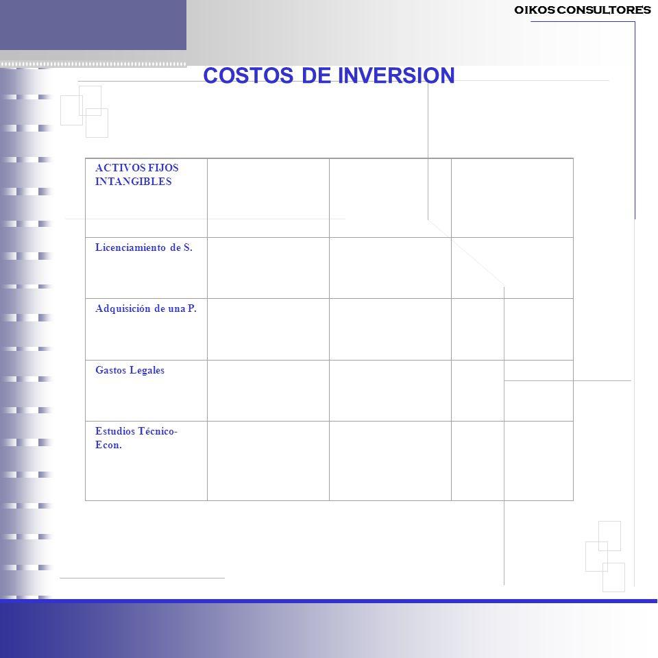 COSTOS DE INVERSION OIKOS CONSULTORES ACTIVOS FIJOS INTANGIBLES